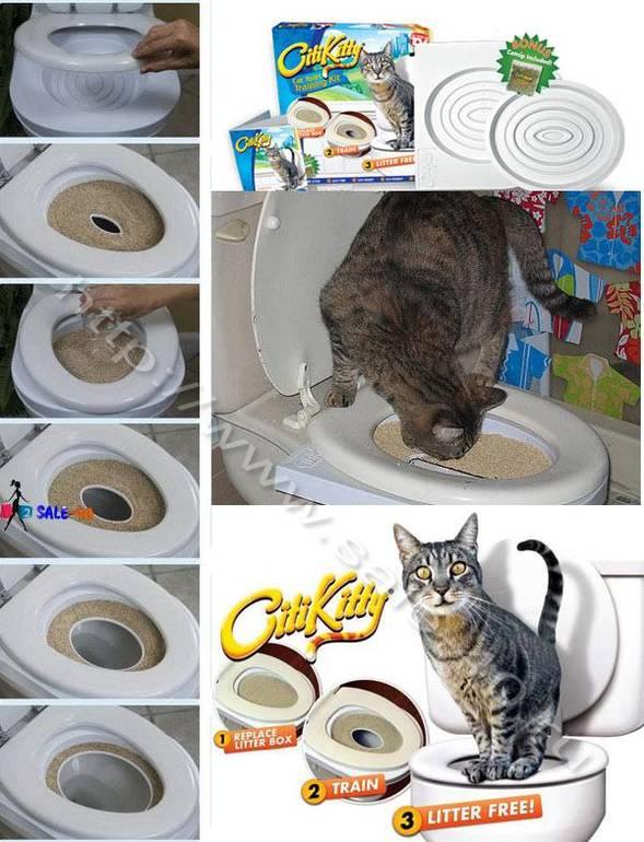 Устройство приучения котов к унитазу своими руками