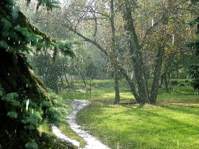 Земли получается что сам дождь